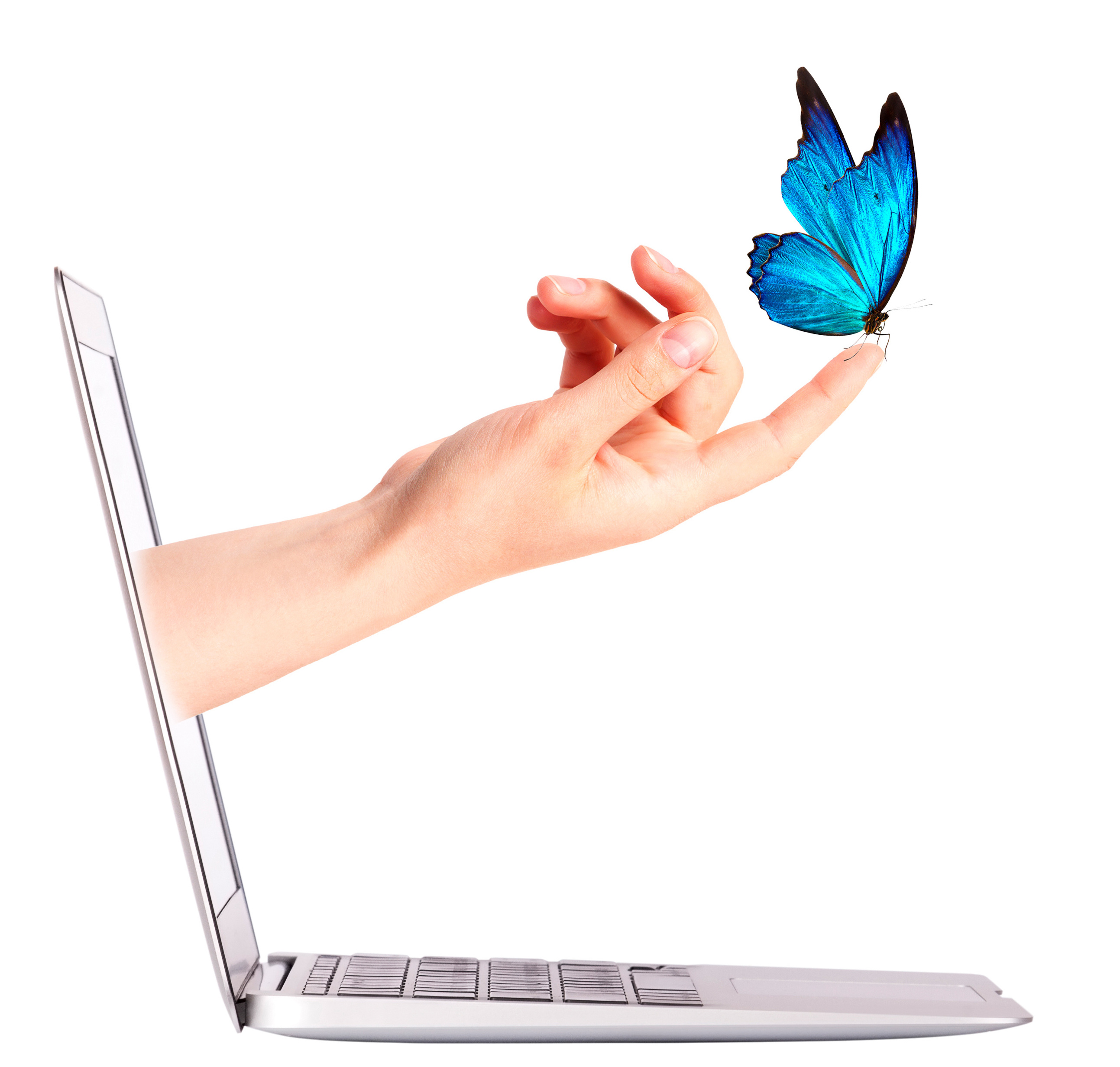 Laptop side view with  butterfly on hand